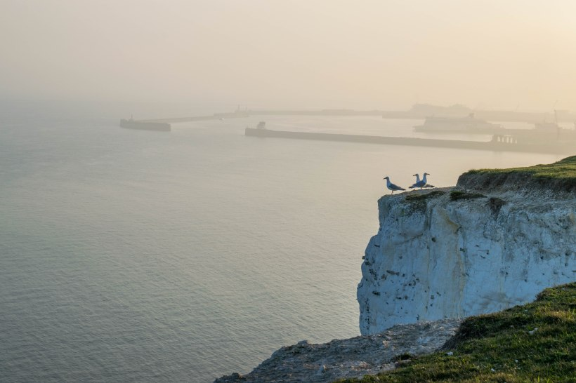 View over the Harbour of Dover